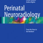 Perinatal Neuroradiology                            :From the Fetus to the Newborn