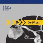Direct Diagnosis in Radiology: Brain Imaging