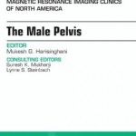 MRI of the Male Pelvis, An Issue of Magnetic Resonance Imaging Clinics of North America
