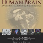 Imaging Anatomy of the Human Brain  :  A Comprehensive Atlas Including Adjacent Structures